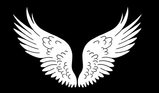 wings_300_dpi